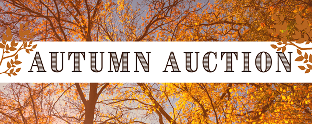 image for events page The Autumn Auction (1)