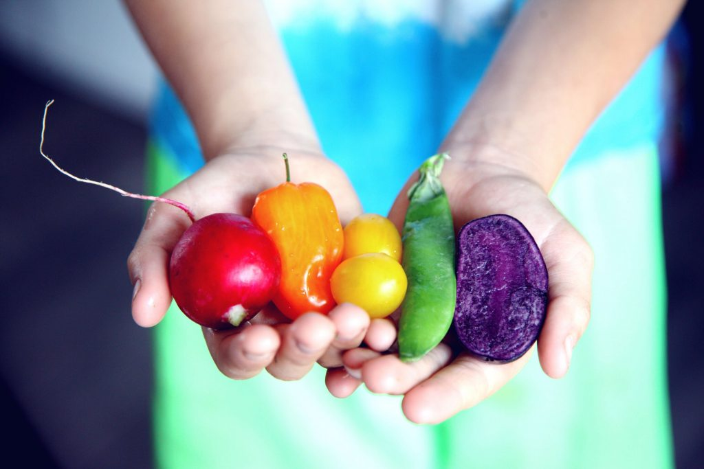 Colorful assortment of healthy food