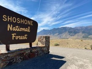 Shoshone National Forest sign