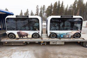 TEDDY Shuttles at Canyon Village