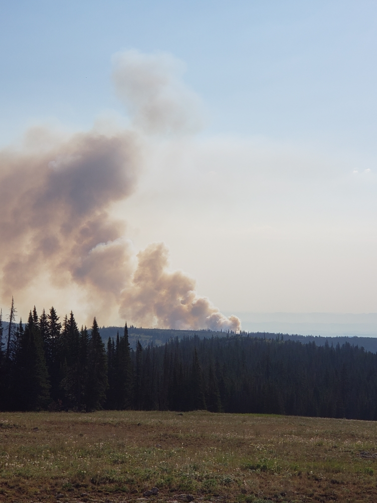 Crater Ridge Fire in Bighorn National Forest