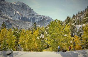 Southfork winter hike