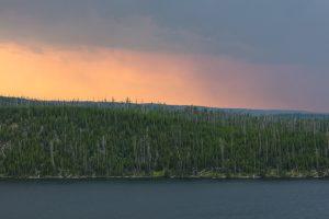 Shore of Shoshone Lake